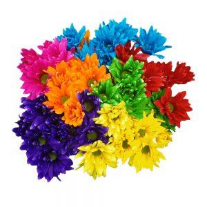 Neon daisy flowers