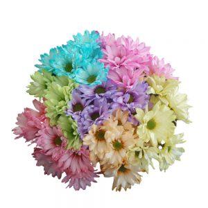 Pastel daisy flowers
